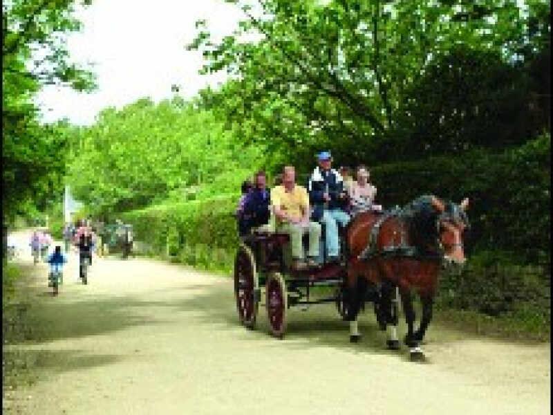 balade cheval sark
